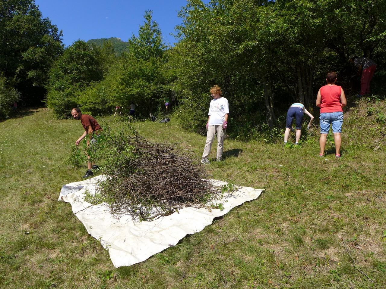 Ochrana vzácnych rastlinných a živočíšnych druhov s Nadáciou Slovenskej sporiteľne