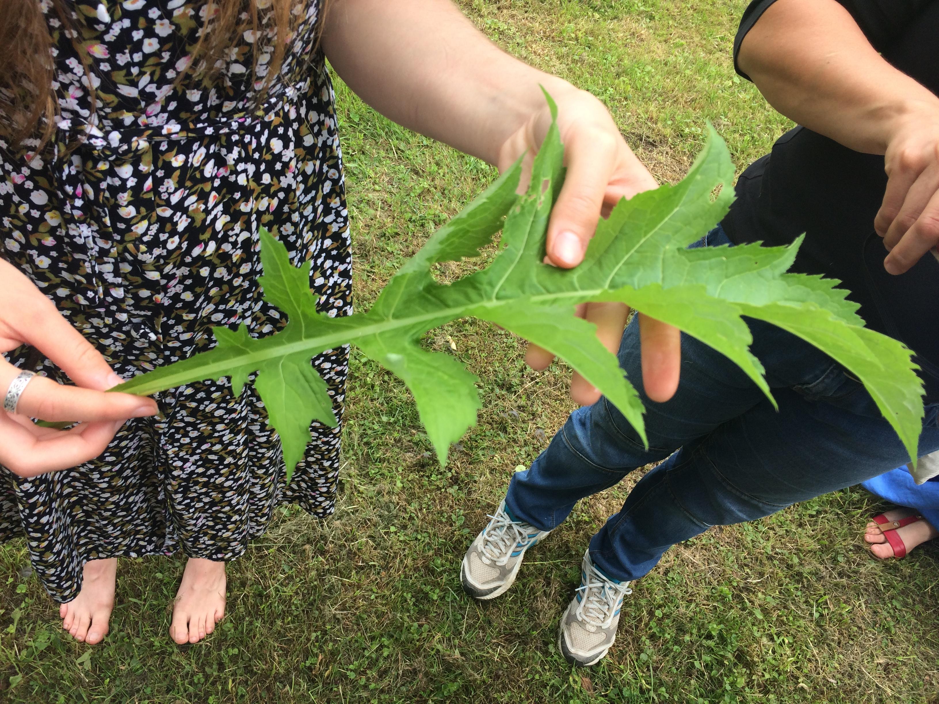Príroda, ktorá učí v BSK